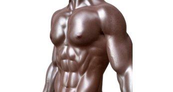 El Hombre Tauro – Características y personalidad - TauroHoy.net